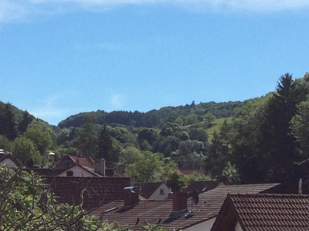 Blick von Balkon Nr. 14a   Ober-Laudenbach